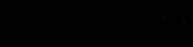 papajestudio-logo